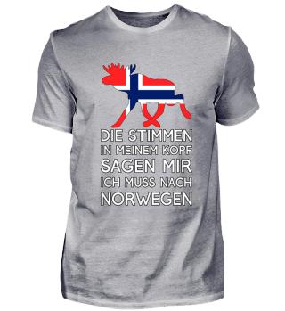 Ich muss nach Norwegen - Stimmen im Kopf