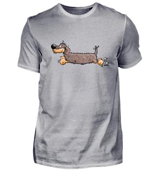 Flotter Rauhaardackel - Dackel - Hund